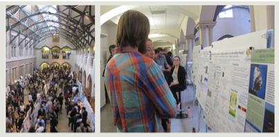 2013 Undergraduate Research Symposium