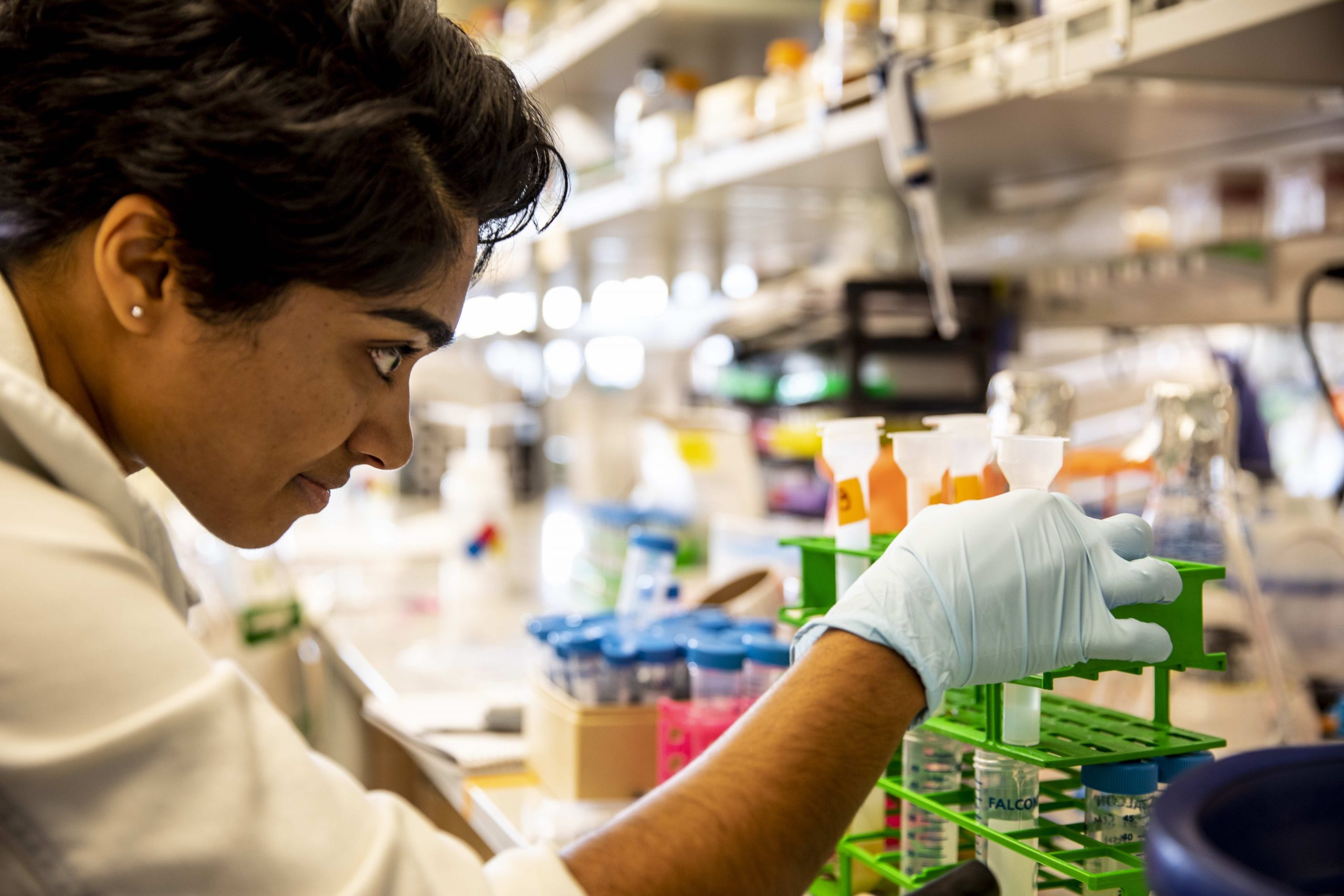Woman examines conical tubes at lab bench