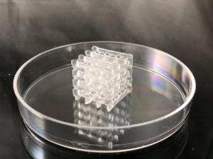 3d printed hydrogel lattice