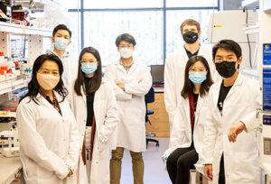 Miqin Zhang lab